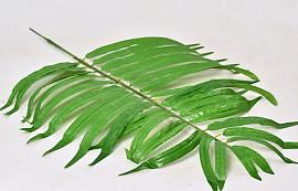 Palm Green 82cm
