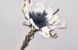 Fleur en mousse 80cm Blanc/Charbon