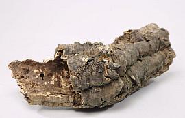 Kurk Stam Medium 20-30cm