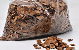 Mehogany Seeds KG