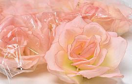 Rose D10cm Peach