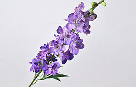 Delphinium Spray Purple 91cm