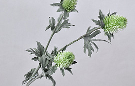 Thistle Spray Green 78cm