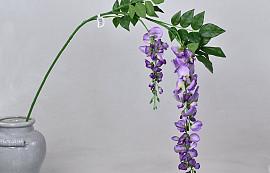 Garden Wisteria Lilac 135cm