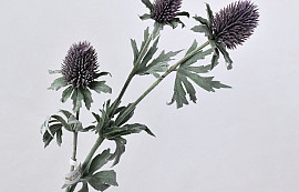 Thistle Spray Purple 78cm