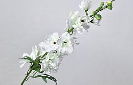 Delphinium Spray White 91cm