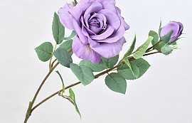 Tintagel Spray Rose Lavender 63cm