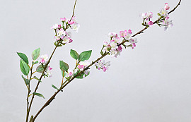 Cherry Blossom Pink 115cm