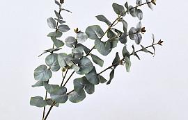 Eucalyptus Spray 108cm