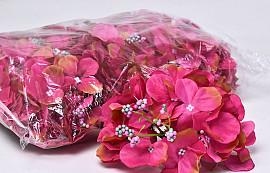 Hortensia Kop D14cm Fuchsia