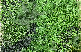 Green Plant Mat 1x1m Mix