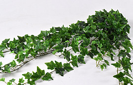 Ivy Hanger 180cm Green