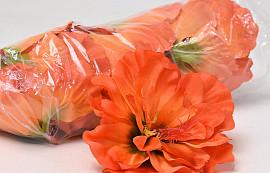 Hibiscus D14cm Orange