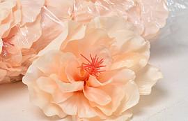 Hibiscus D14cm Peche