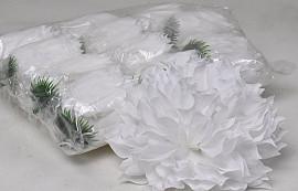 Dahlia D16cm White