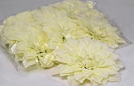 Dahlia D20cm Cream