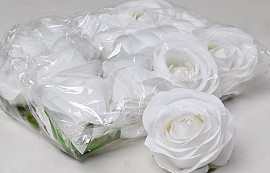 Rose D9cm Blanc