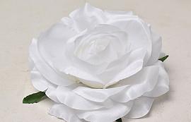 Rose D11cm White
