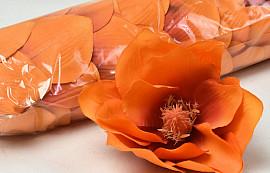 Magnolia D17cm Oranje