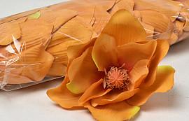 Magnolia D17cm Orange