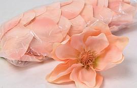Magnolia D17cm Roze