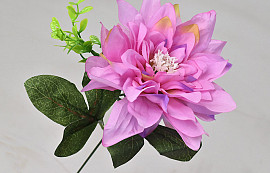 Dahlia D14cm Pink