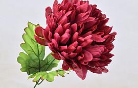 Chrysanth 16cm Burgundy