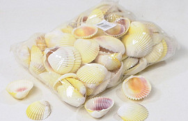 Cockles 1Kg White
