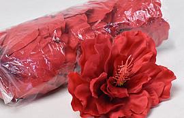 Hibiskus D14cm Rot
