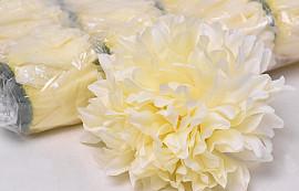 Chrysanthemum D16cm Cream