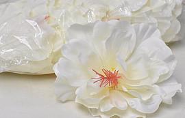 Hibiscus D14cm Creme