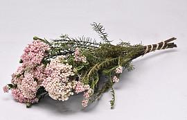 Rice Flower 45cm, 10 stelen
