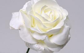 Schaumstoff Rose XL Weiß, D 13cm