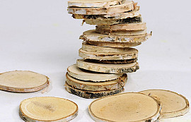 Birch Slices 19pcs