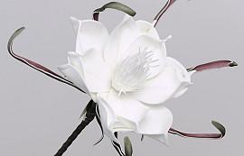 Foam Flower White, D 20cm