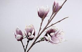 Schaumstoff Magnolia Weiß/Lila