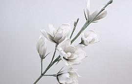 Schaumstoff Magnolia Weiß/Grau, D 18cm