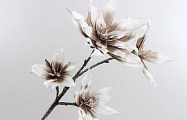 Blüte Schaumstoff Weiß/Mocca