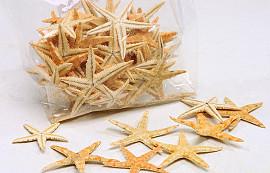 Shells Starfish Small 50pcs.