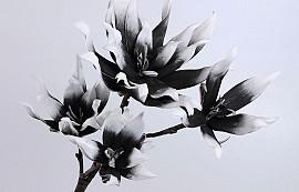 Blüte Schaumstoff Weiß/Anthrazit, D 18/28cm