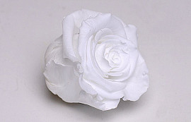 Rose Heads 5cm White