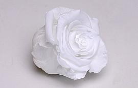 Roses préservé 5cm Blanc
