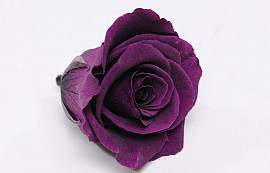 Rose Heads 5cm Purple