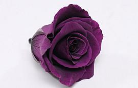 Roses préservé 5cm Pourpre