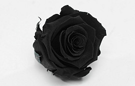 Rose Heads 5cm Black
