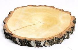 Berkenschijf 30-35cm