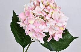 Hydrangea 68cm Pink-White