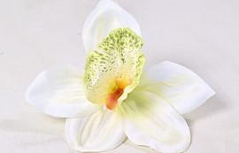 Orchidee D14cm Creme