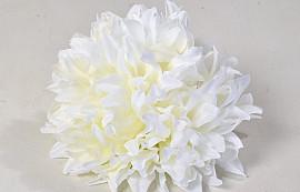Chrysanth D16cm Creme