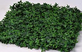 Ivy mat 50x50cm